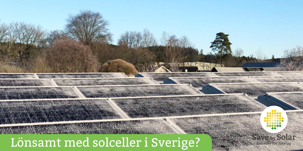 Lönsamt med frostiga solceller i Sverige