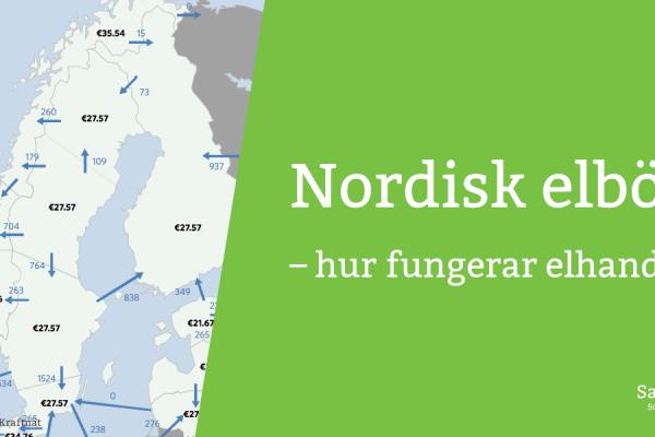 Karta över nordisk elhandel